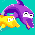 Dolphin Dash